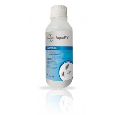 Aqua PY EW